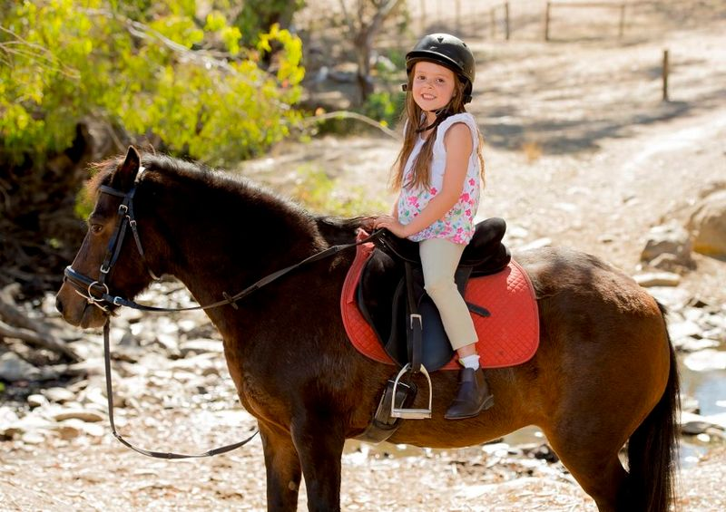 toddler on a horse