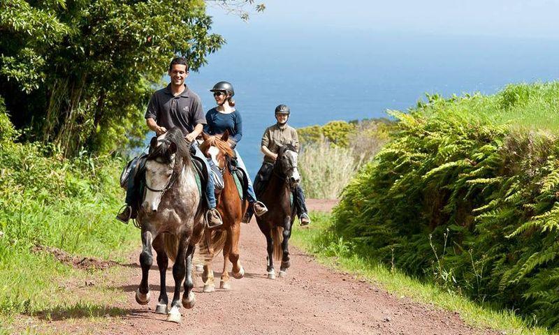 Sweden horse riding