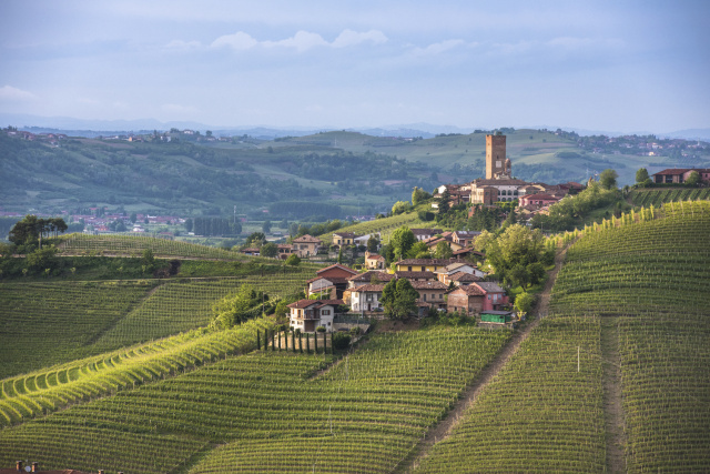 Piedmont: The Langhe Wine Region