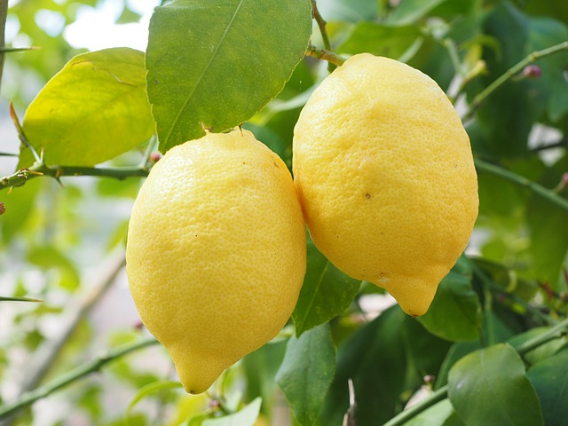 Foods that all Yogis & Non-Yogis Should Eat: lemons