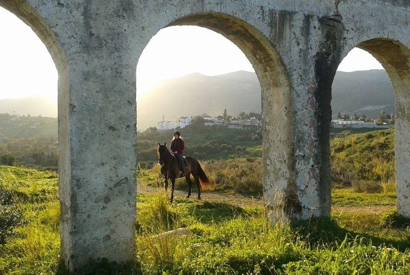 horse-riding-malaga-andalusia