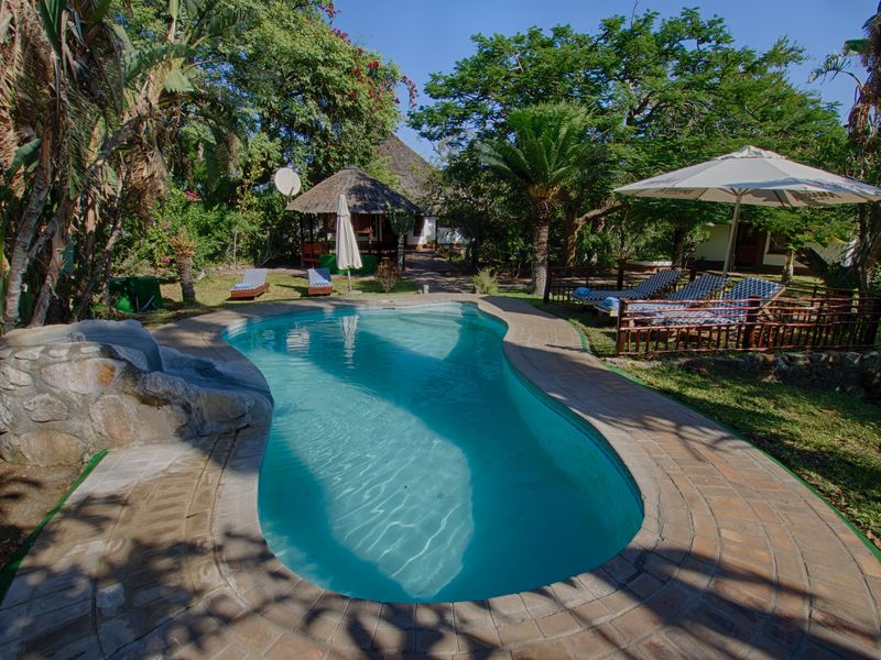 huts and pool at accommodation in kruger national park