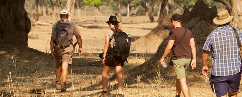 on a photography safari