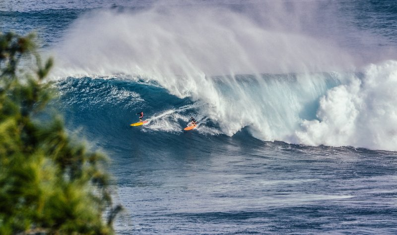 surfing-maui-hawaii