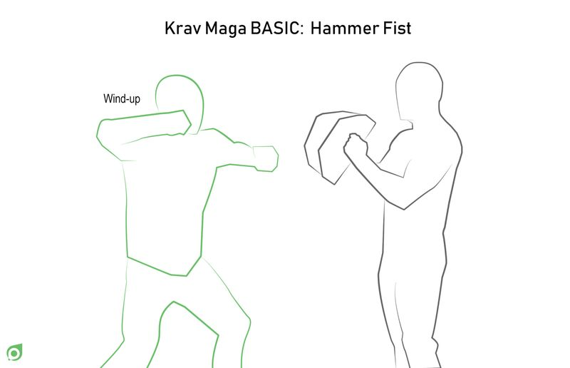 hammer fist step 2 book martial arts tripaneer