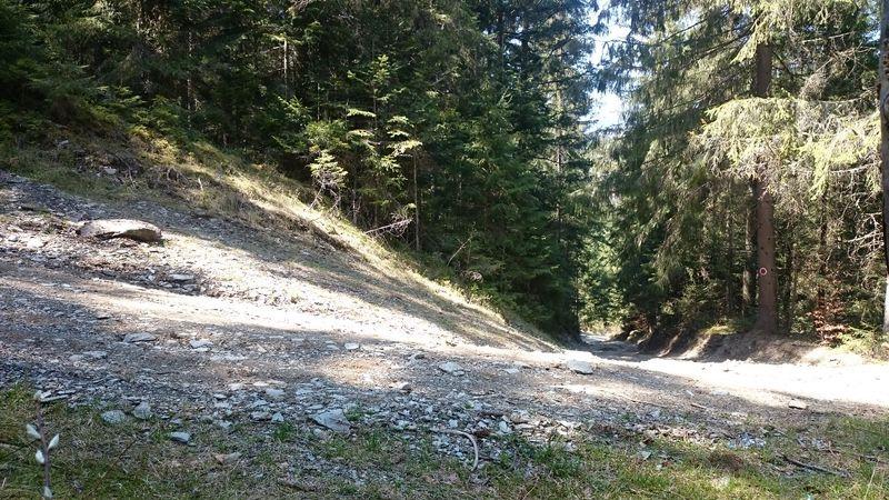 Trail in Arieseni, Romania