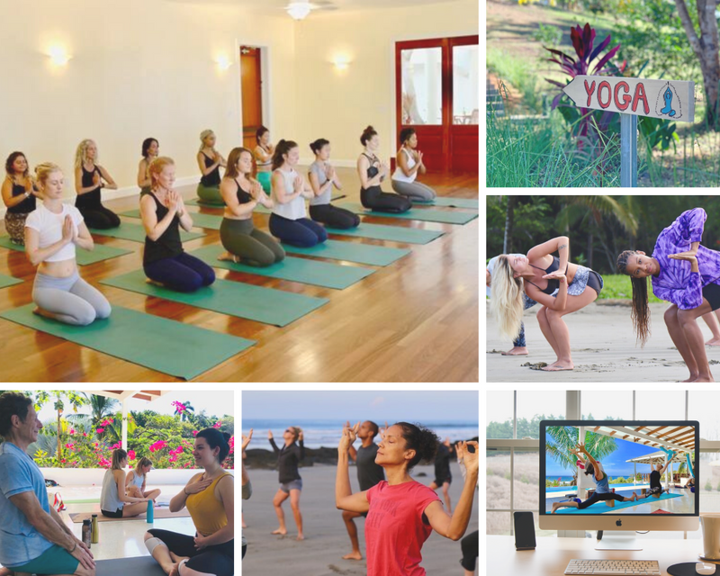 Top 10 Online Yoga Teacher Training Courses Become An Instructor From The Comfort Of Your Home Bookyogaretreats Com