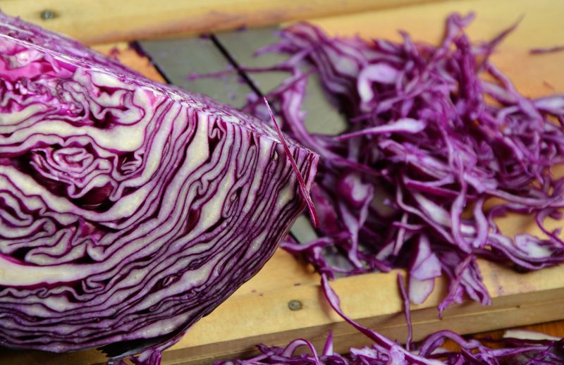 Cabbage purifies the blood