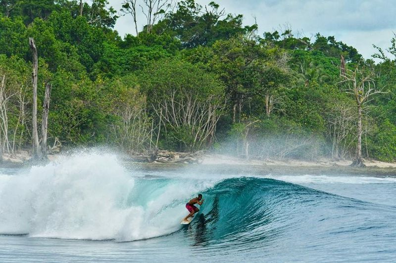 surf-mentawai-islands