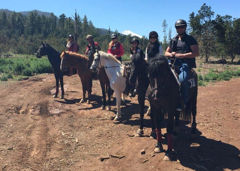 horse-riding-tenerife