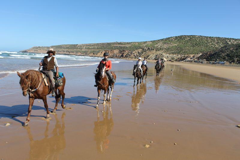Moroccan horse riding
