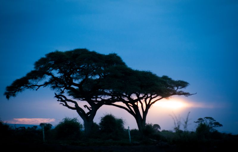 sunset-amboseli-national-park