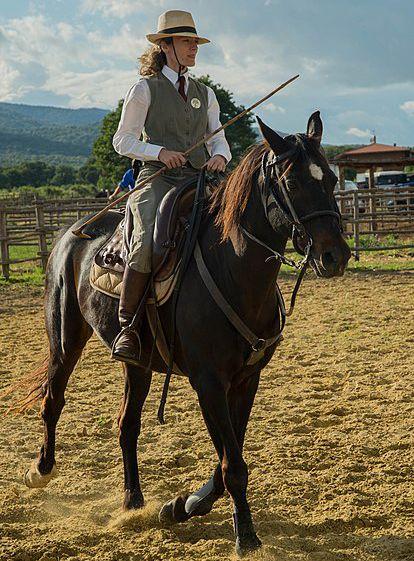 Buttero riding Maremmano horse