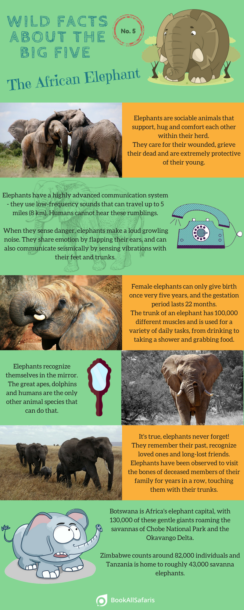 facts-african-elephant