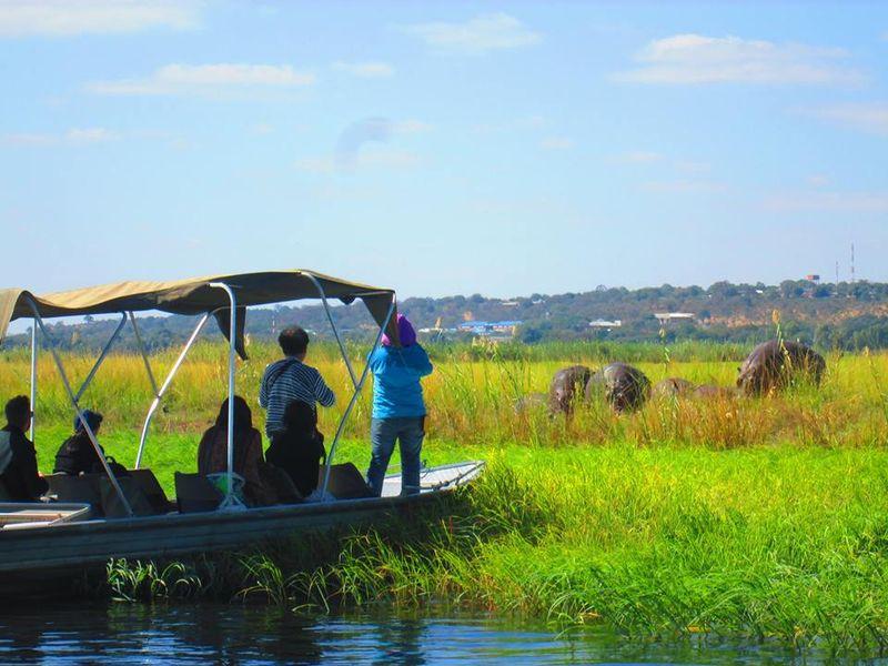 zimbabwe river safari