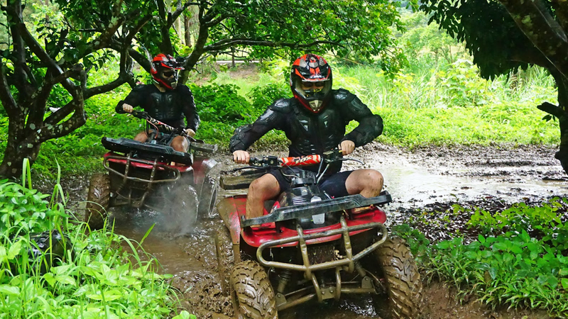 jungle quad tour