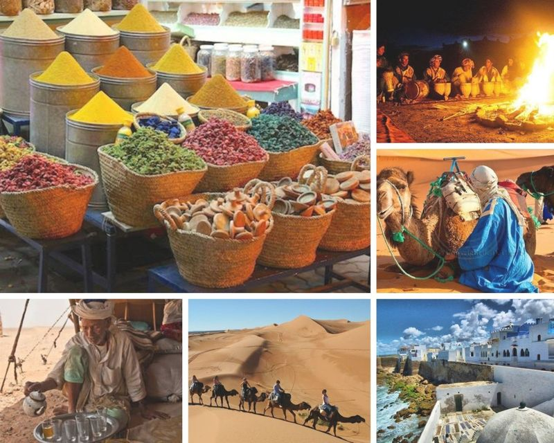 food and cultural tour in morocco