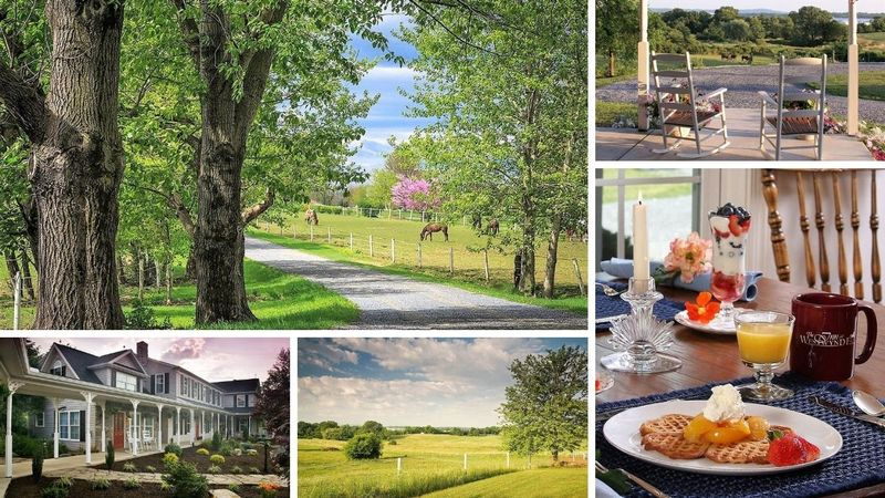 4 Day Yoga Retreat at Countryside Farm in Hershey, Pennsylvania