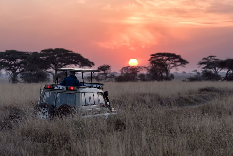 driving-safari-africa