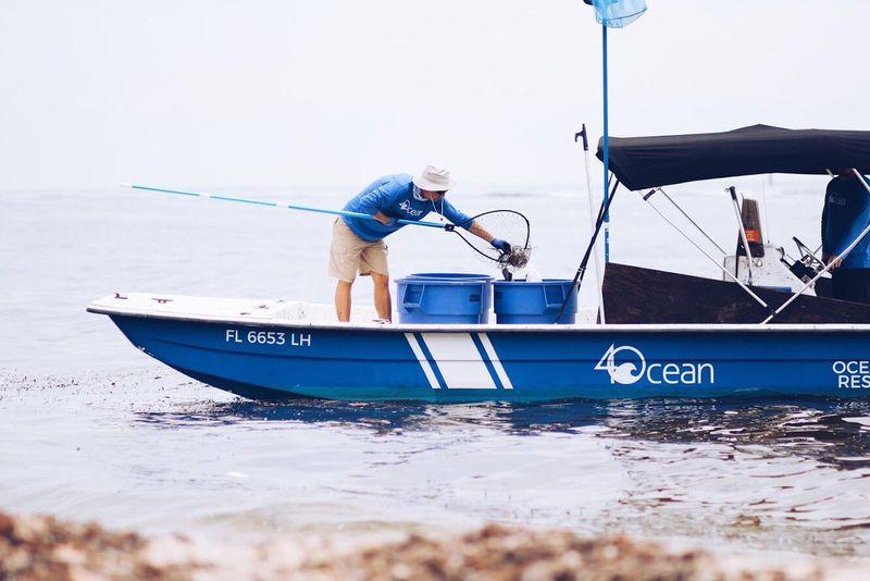 ocean-cleanups-4ocean