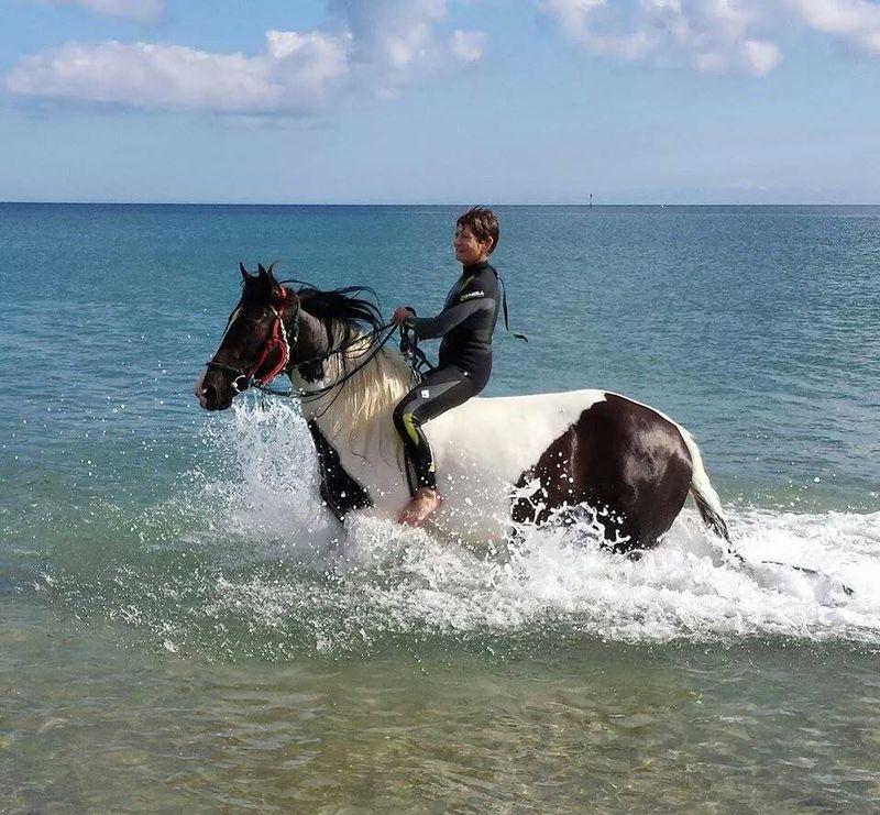Cornwall beach horse riding