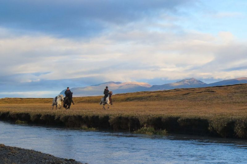 horse-riding-east-iceland