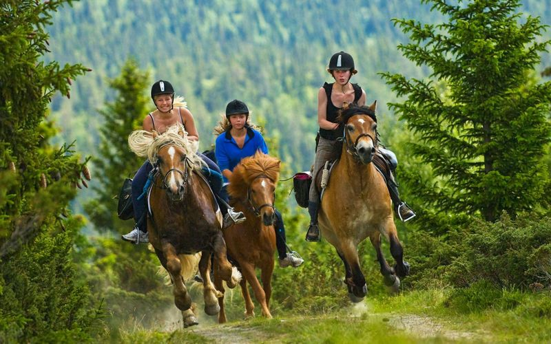 Norway horse riding