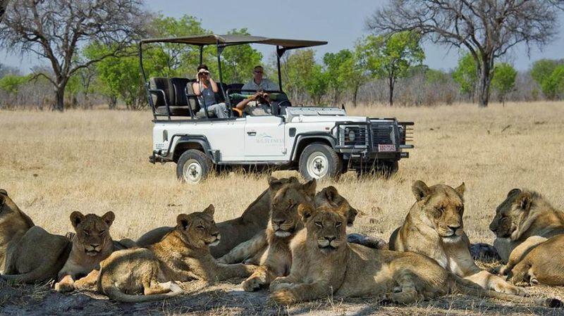 open safari jeep in botswana