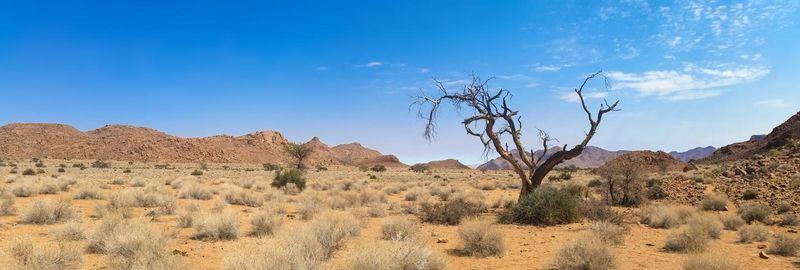 african landscape safari photography