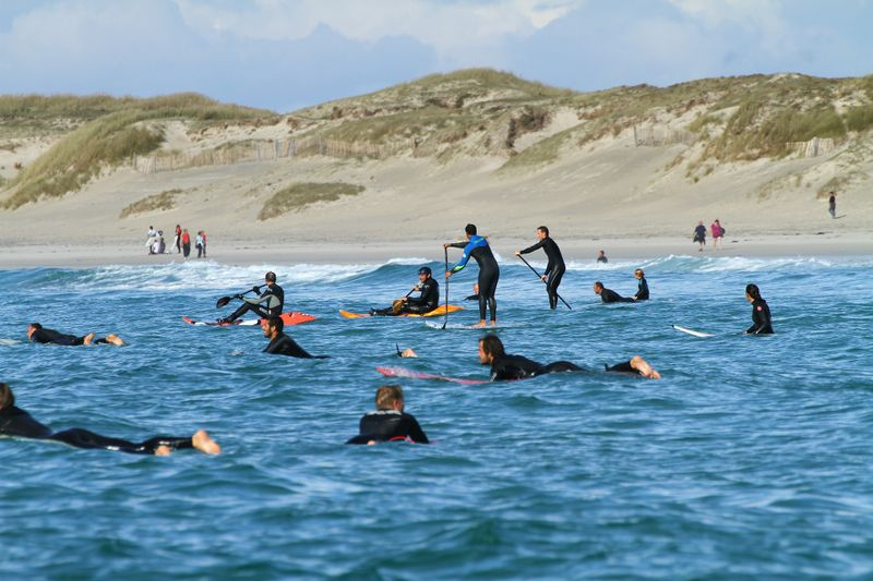 surfers-contribution