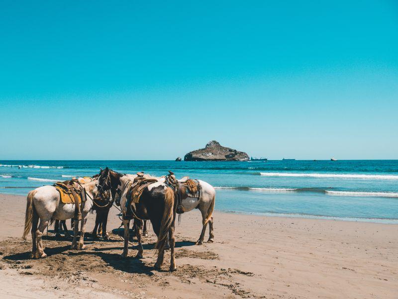 horse-riding-mexico