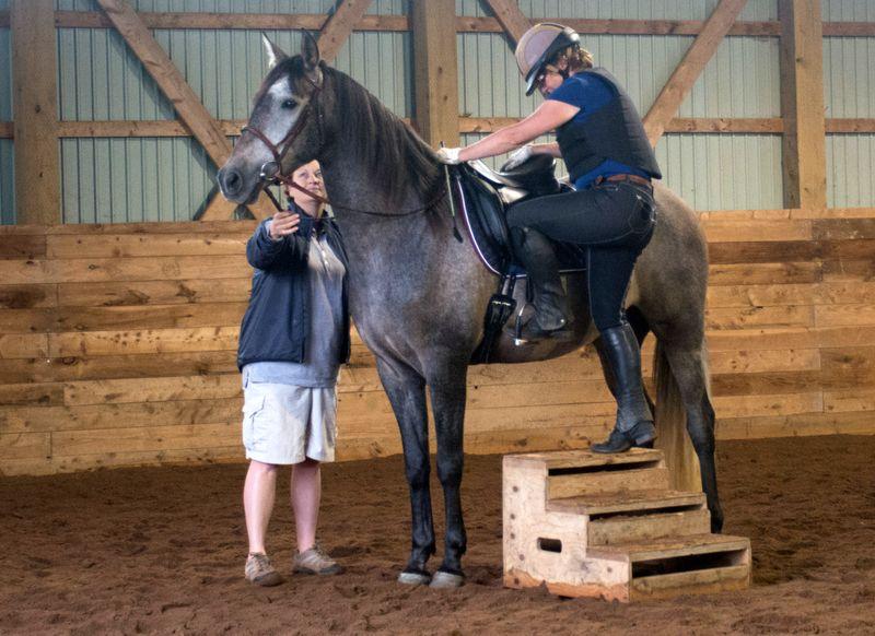 mount-horse-beginners