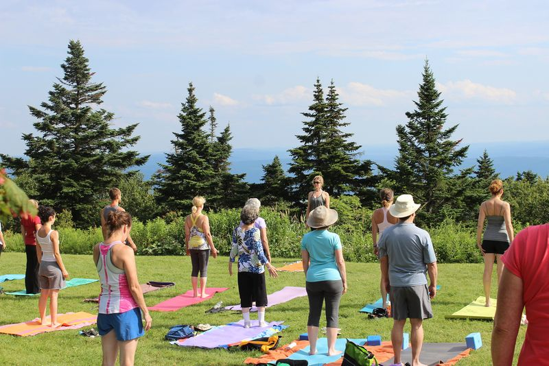 group of senior people doing outdoor yoga