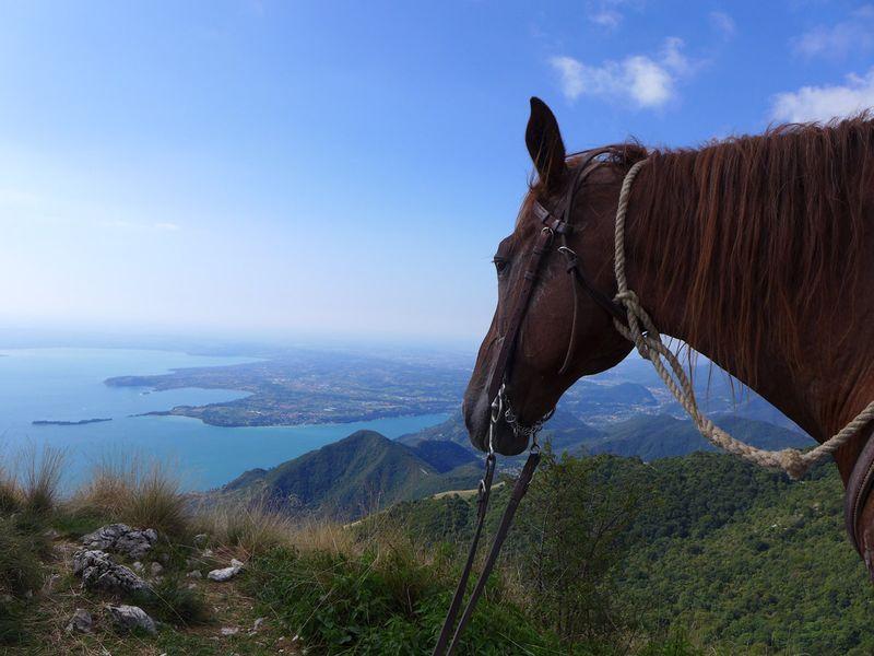 horse-riding-lombardy-italy