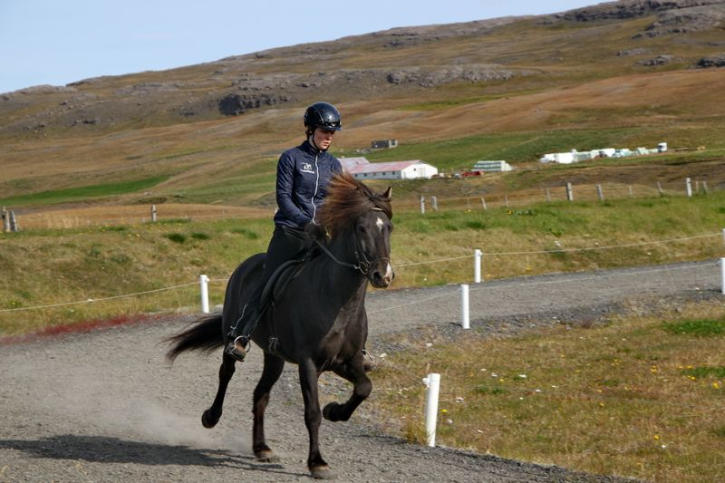 horse-riding-northern-iceland