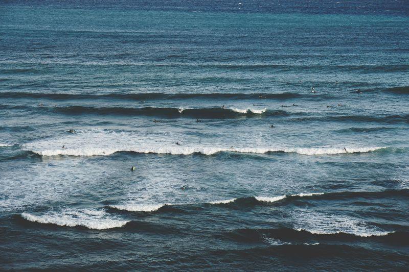 surf-line-up