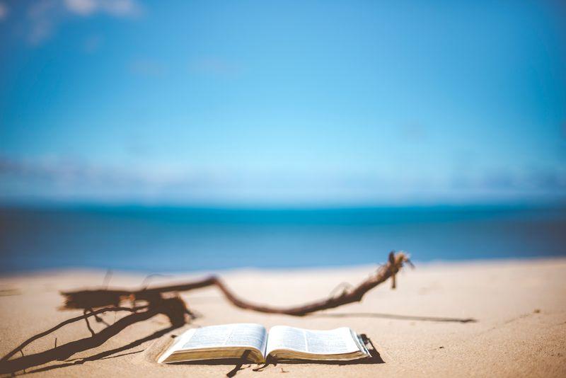 surf-literature