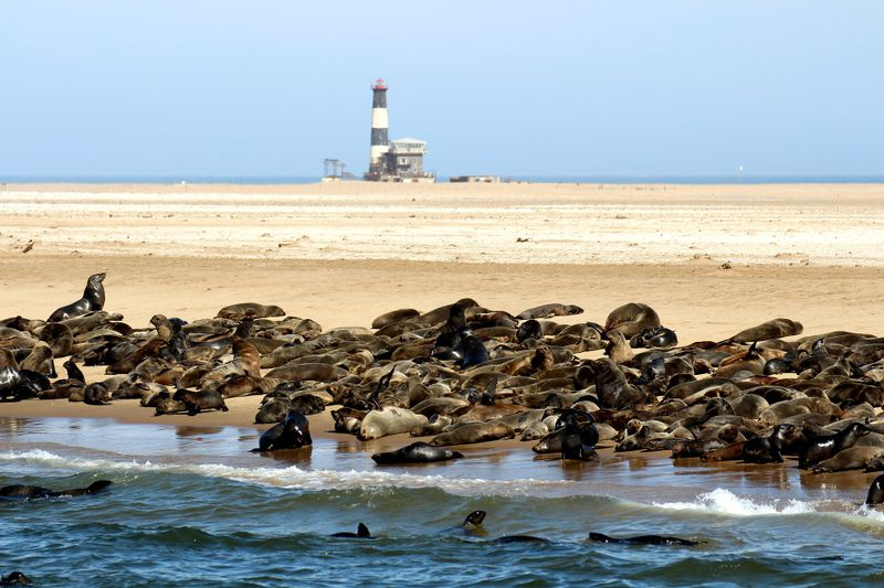 walvis-bay-namibia