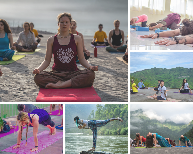multi-style-yoga-teacher-training-rishikesh