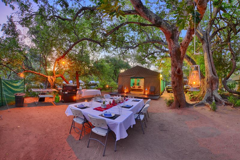 dinner under the stars in a camp in a national park in africa