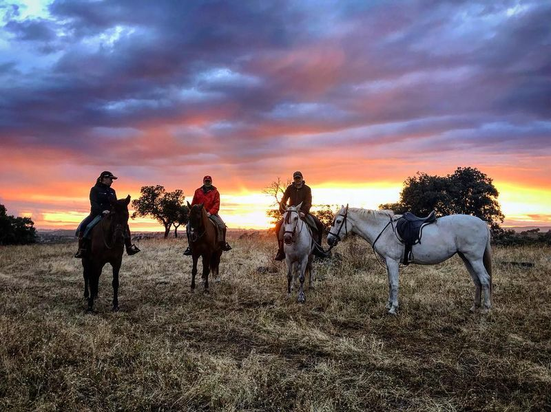 winter-horse-riding-andalusia-spain