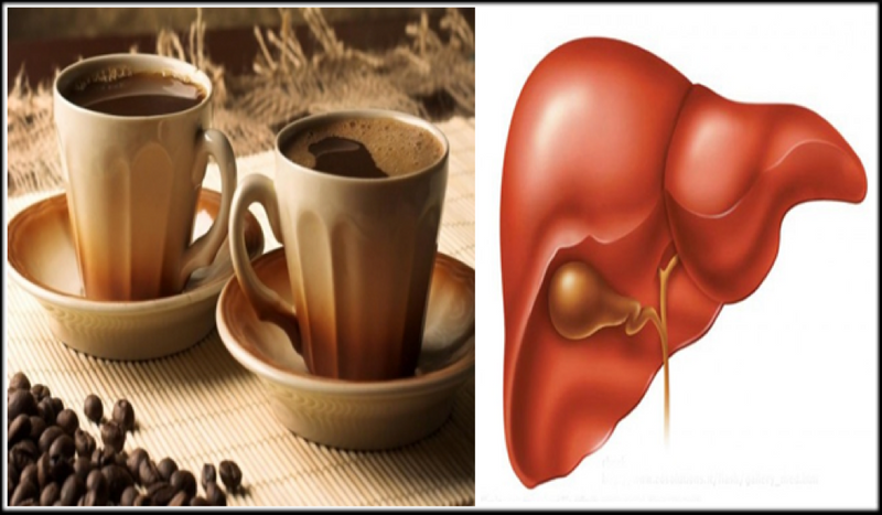 coffee and the liver
