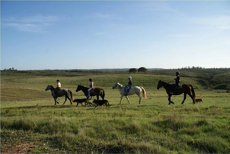 horse riding holidays Faro district