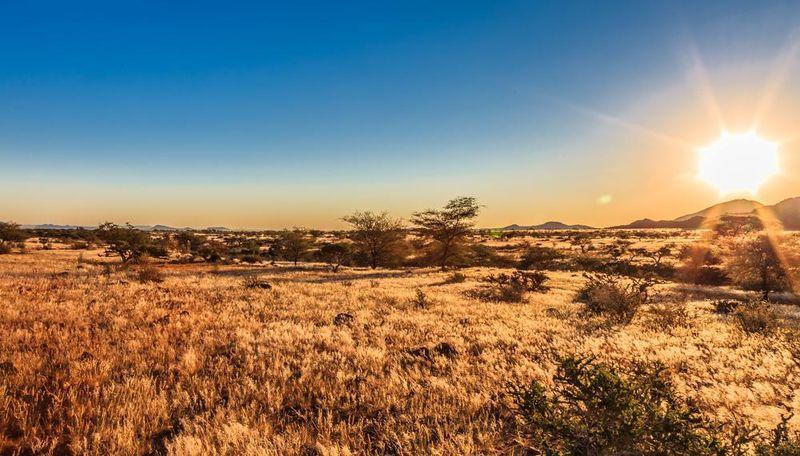 day time landscape photo