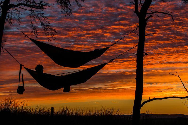 person sleeping in hammock
