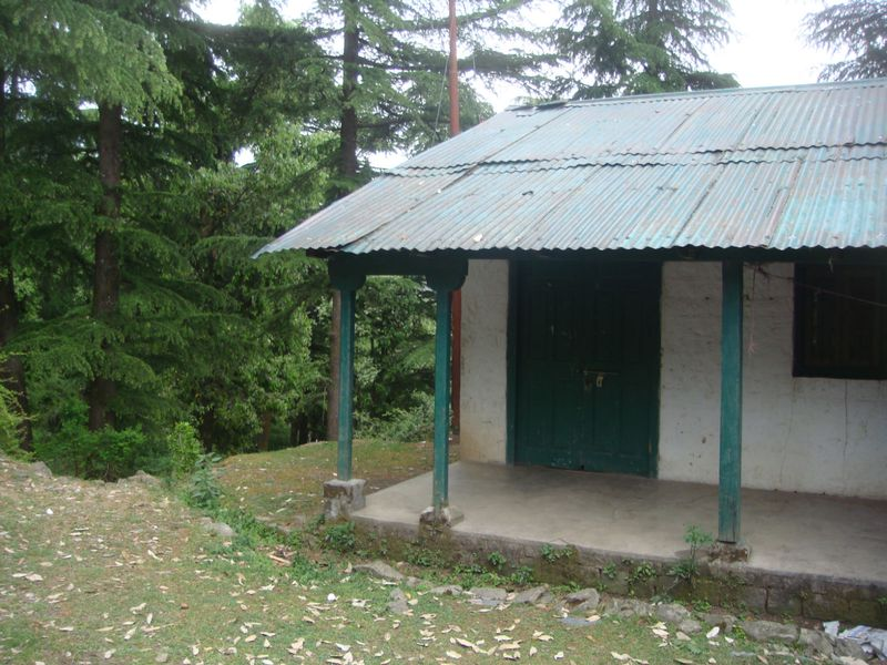 yogi cabin in indian woods