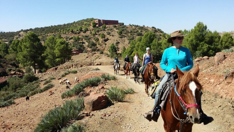 horse riding holiday Morocco