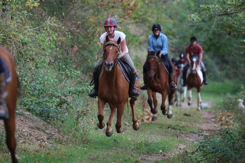 intermediate-horse-riding-holiday