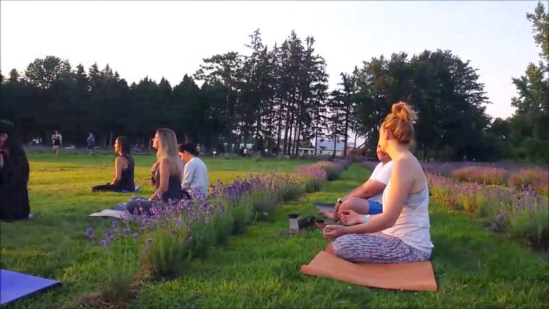 arezzo yoga retreat