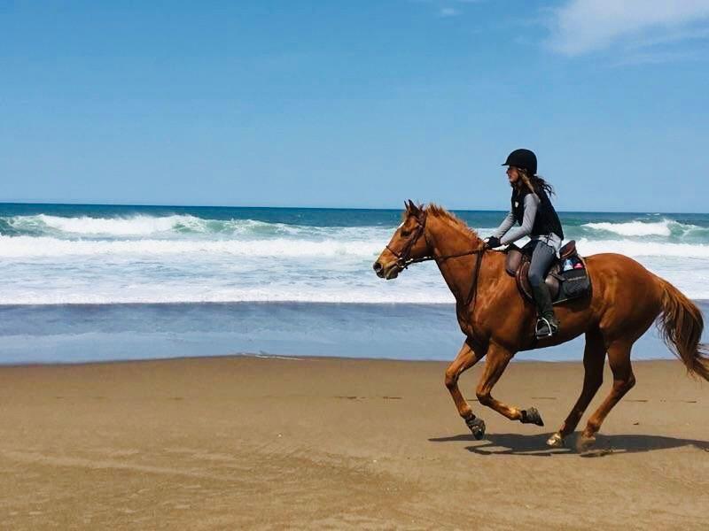 horse riding California